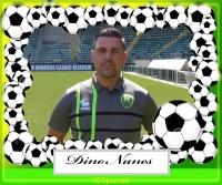 Dino Nunes site.jpg